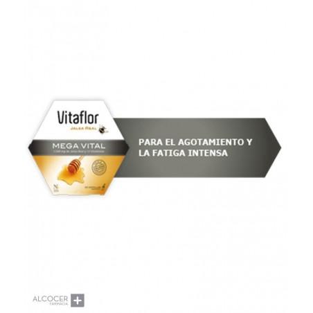 VITAFLOR JALEA REAL MEGA VITAL 200 ML 20 AMP