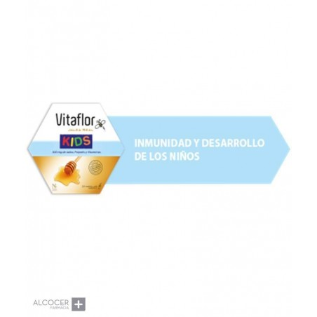 VITAFLOR JALEA REAL KIDS 10 ML 20 AMP